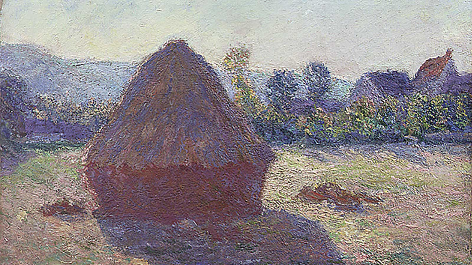 Monet painting and hyperspectral imaging.
