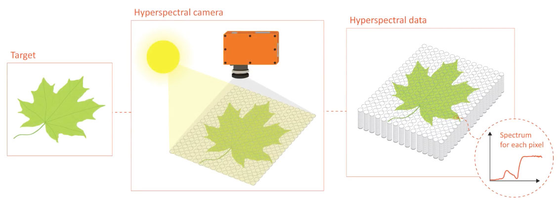 Hyperspectral camera