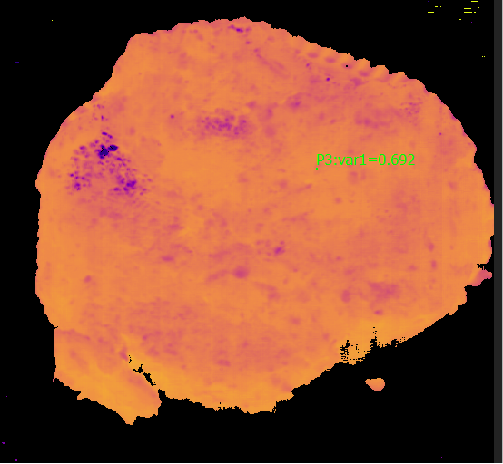 Figure 3: Example of Moisture distribution on a meat sample (here Sample 3).